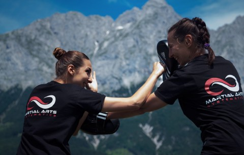 Martial Arts Pratzentraining