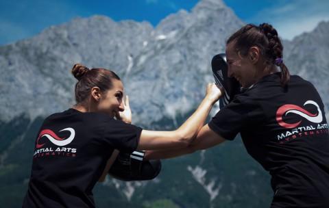 Martial Arts Pratzentraining