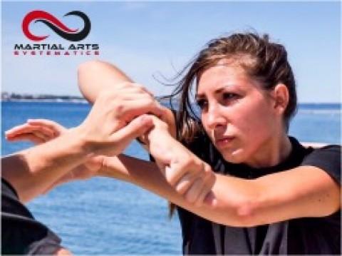 Martial Arts Clip5