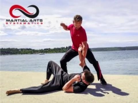 Martial Arts Clip2