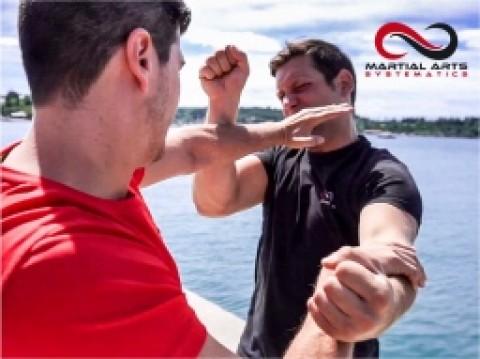 Martial Arts Clip4